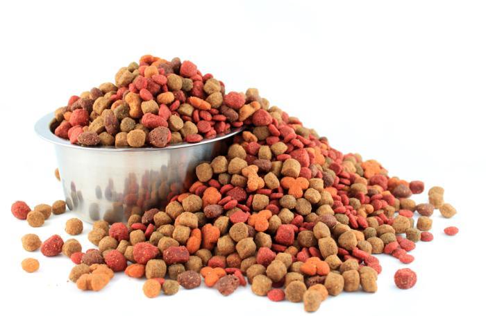 قیمت خرید غذا سگ عمده در مشهد