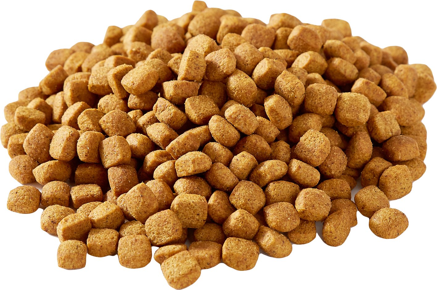 صادرات خوراک گربه خانگی به بازارهای جهانی