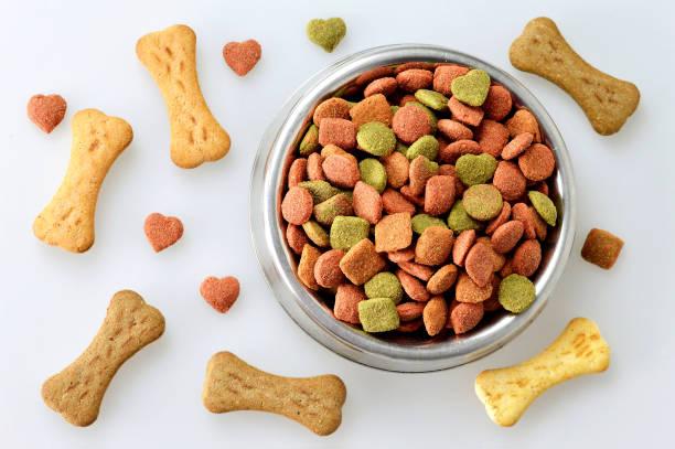 تفاوت غذا سگ در وعده های مختلف