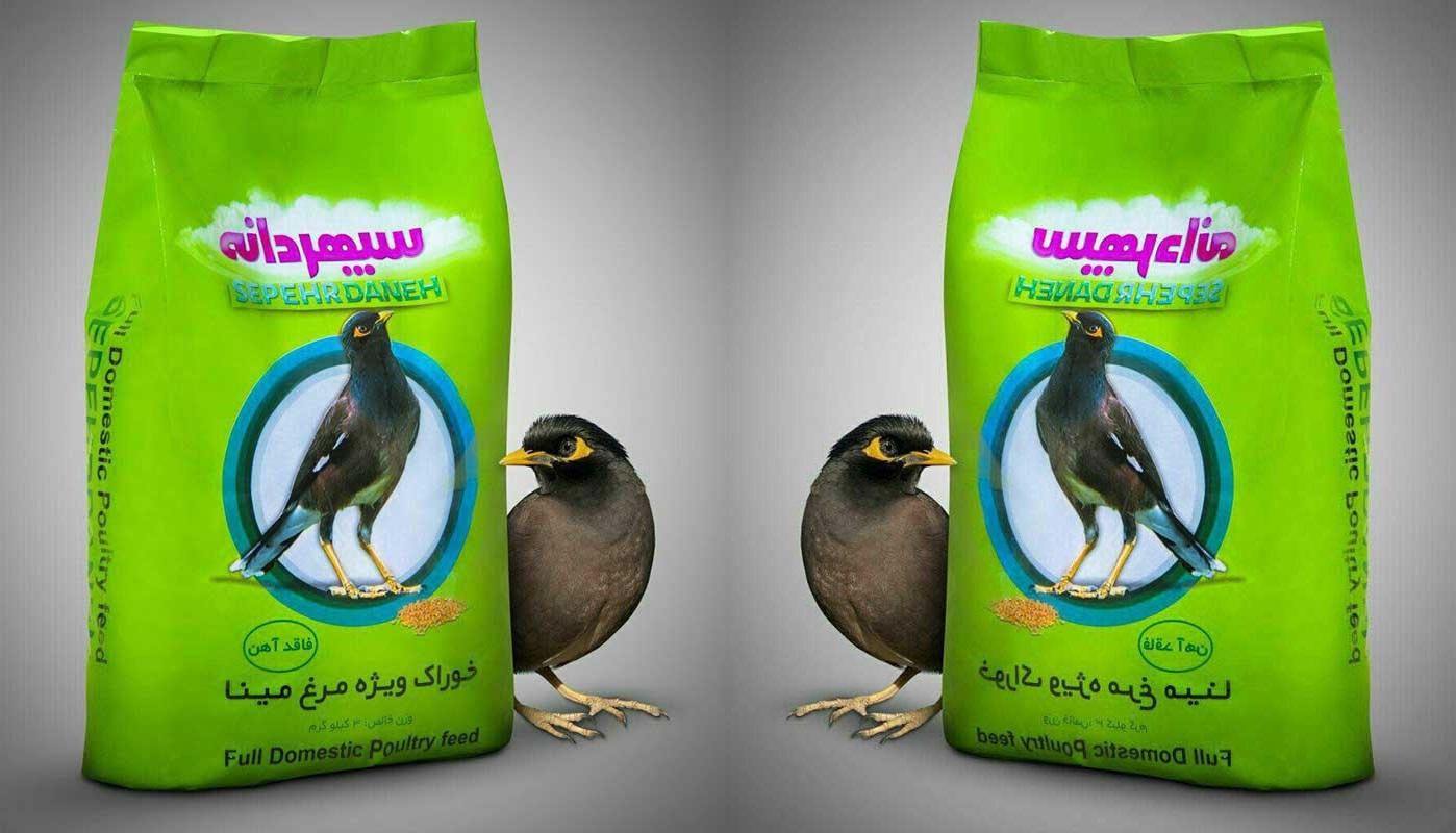 مشخصات خوراک پرنده مناسب مرغ مینا درحال رشد