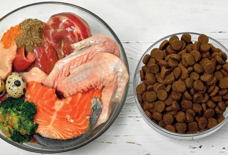 غذای سگ از چه موادی ساخته می شود؟