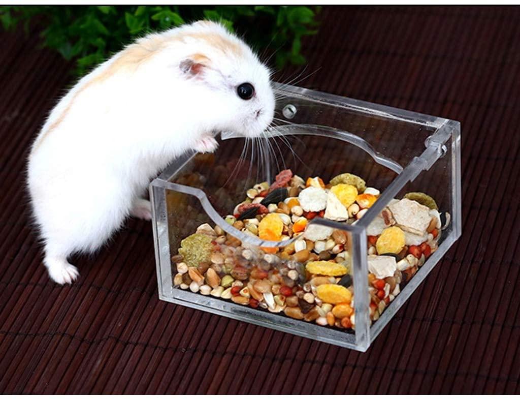 فواید غذا خشک همستر از تولید تا مصرف