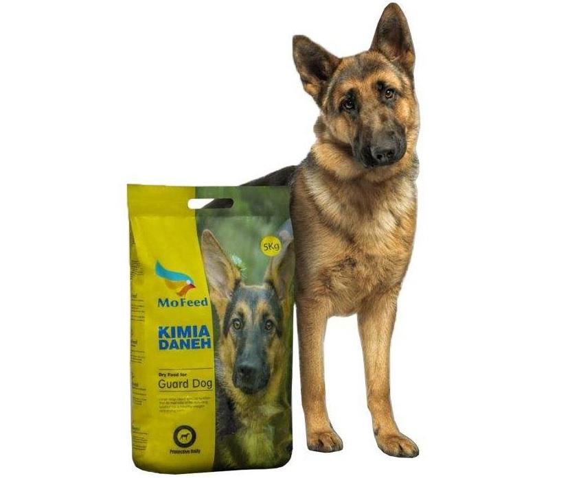 غذای سگ ژرمن شپرد چیست؟