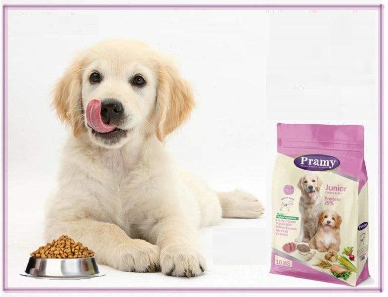 قیمت فروش غذای سگ ایرانی عمده