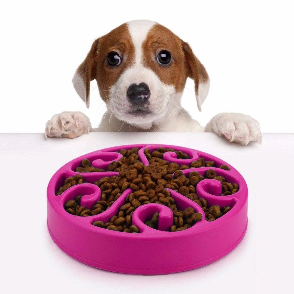 نمایندگی مرکزی فروش غذا صبحانه سگ