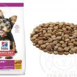 بازار واردات خوراک توله سگ برند معتبر