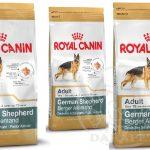 بازار بزرگ خوراک سگ ژرمن