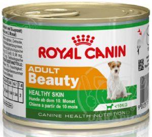 فروش مستقیم غذا تر سگ در سراسر کشور