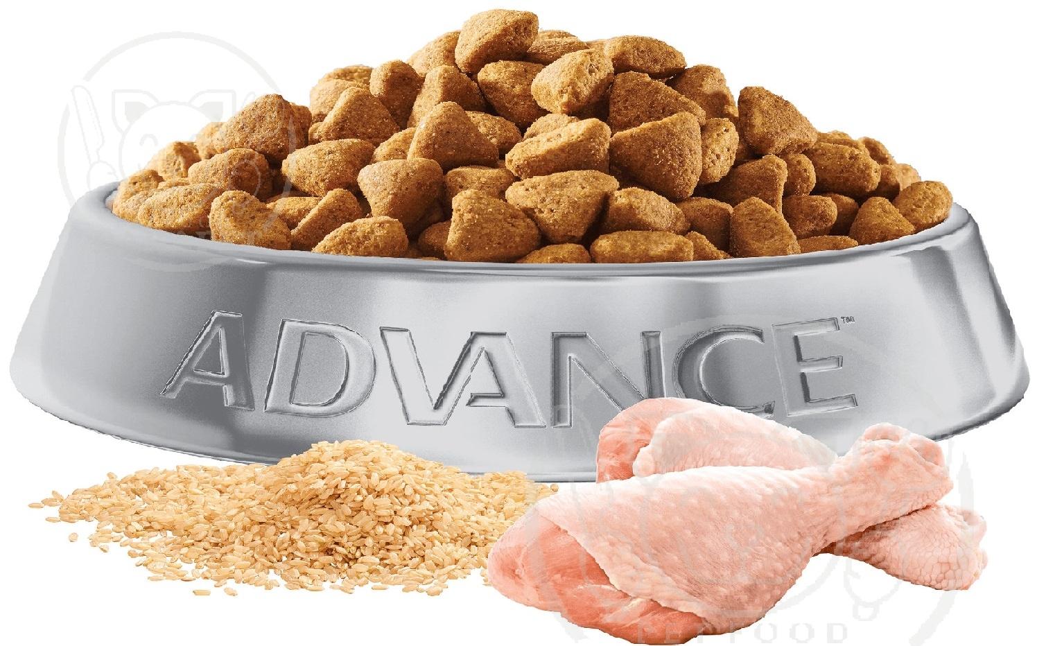نکاتی چند درباره فرآیند آماده سازی غذای سگ
