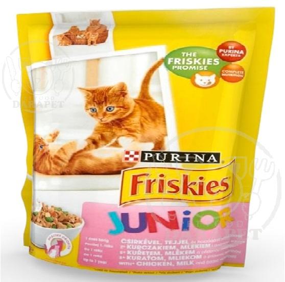 خوراک مناسب بچه گربه یک تا سه ماهه