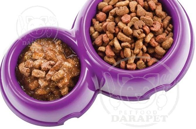 مقایسه مشخصات غذا تر و خشک سگ