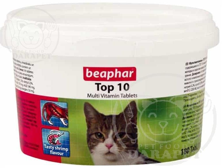 ضرورت استفاده از مکمل در رژیم غذای گربه