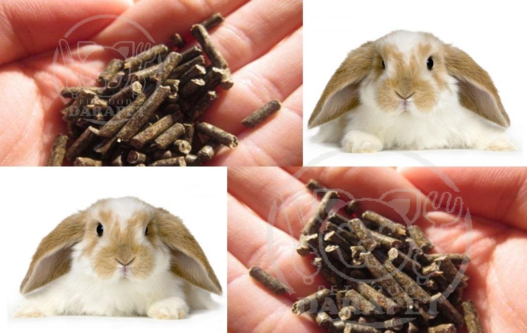 مشخصات غذا خرگوش پلت اصل چیست؟