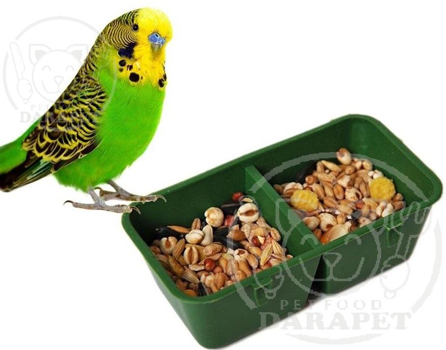 مهمترین مواد مغذی در خوراک پرنده مرغ عشق