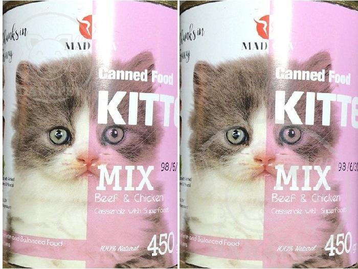 مزایای خوردن غذا تر گربه برای رشد بچه گربه