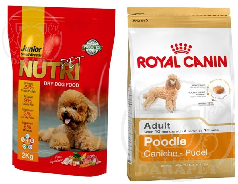 مقایسه انواع خوراک سگ ایرانی و خارجی