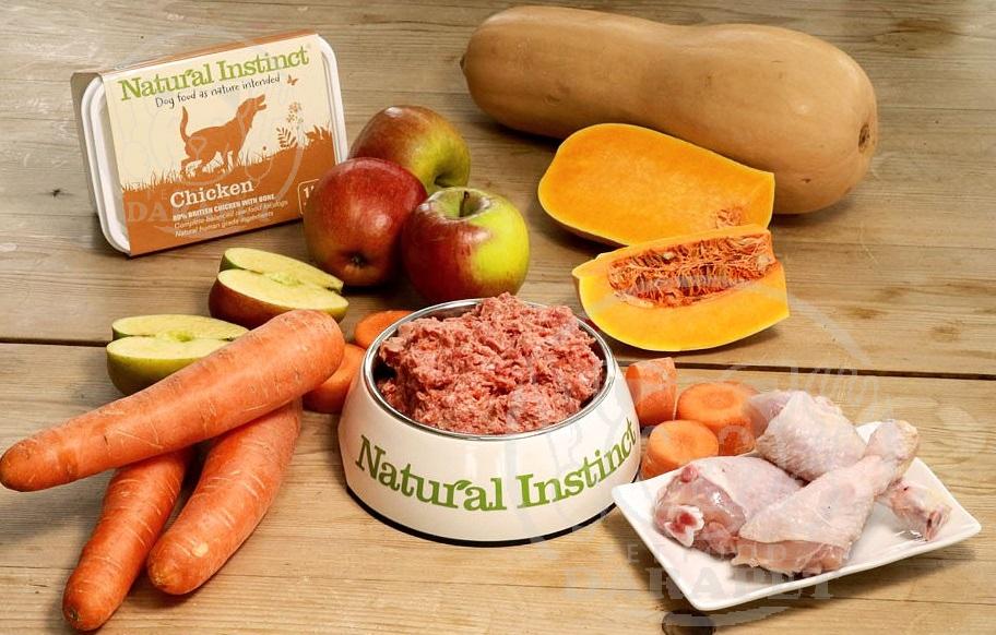 ویژگیهای خوراک مناسب در سن رشد سگ چیست؟