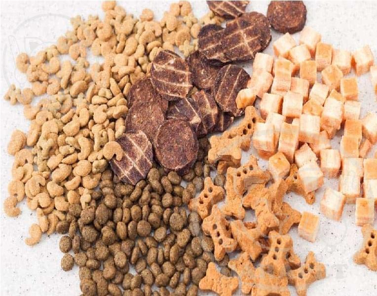 معرفی غذای اختصاصی نژادهای مختلف سگ