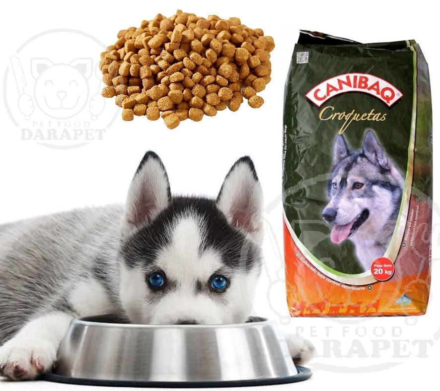 غذای سگ فله بخریم یا بسته بندی؟