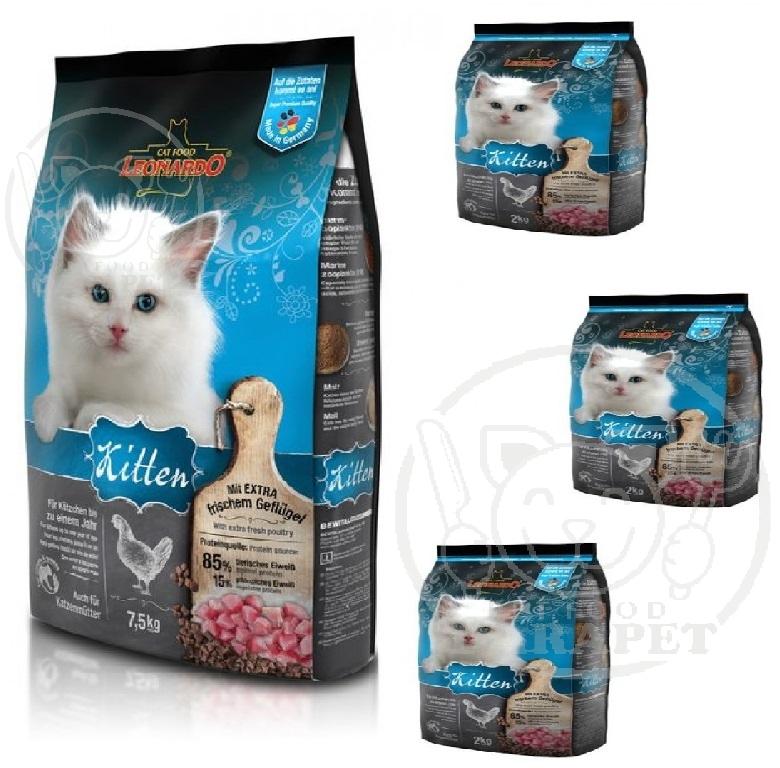 عرضه انواع برند معتبر خوراک بچه گربه