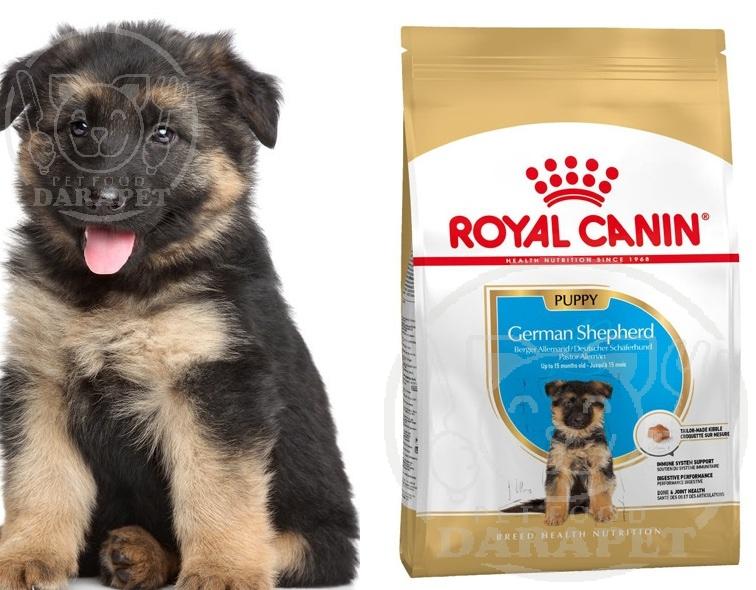 نکات مهم خرید خوراک سگ ژرمن توله