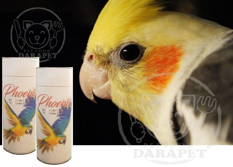 فروش مستقیم خوراک پرنده ارزان مخصوص عروس هلندی