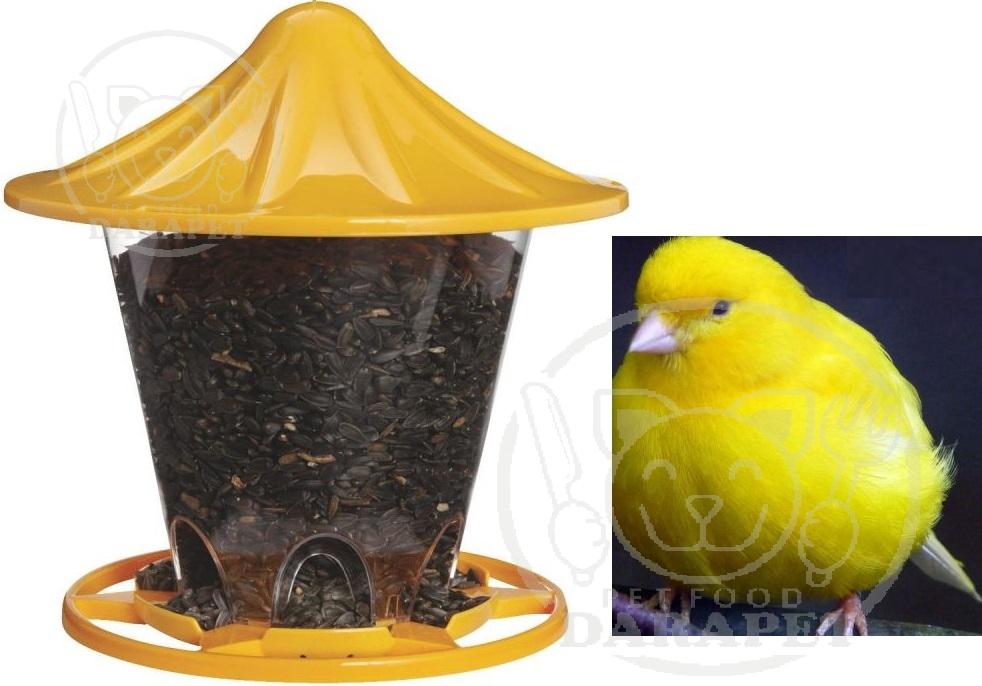عامل صلی قیمت غذای پرنده ارزان