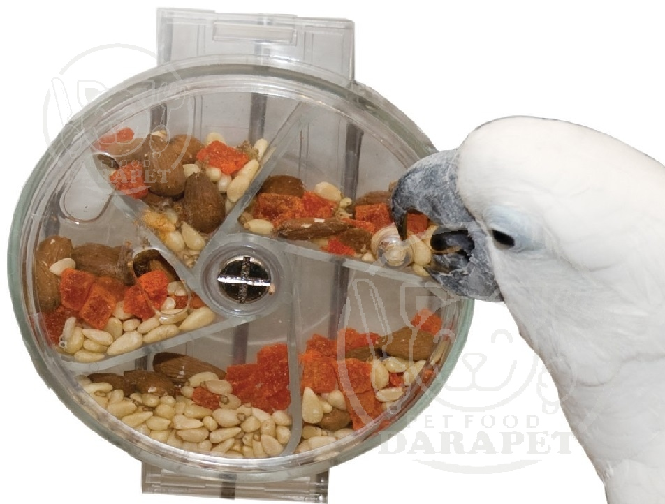 راهنمای خرید غذای خشک پرنده
