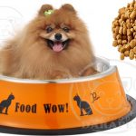 خرید آسان غذای سگ اشپیتز