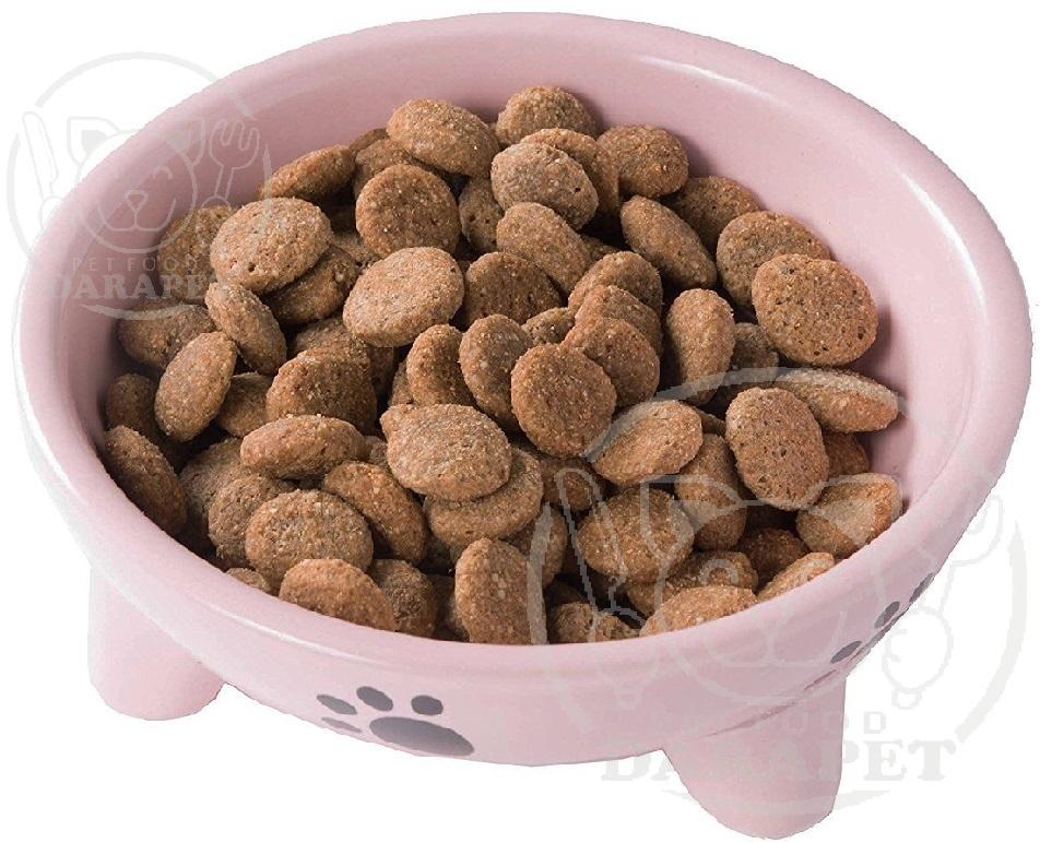 خرید مستقیم خوراک گربه ارزان