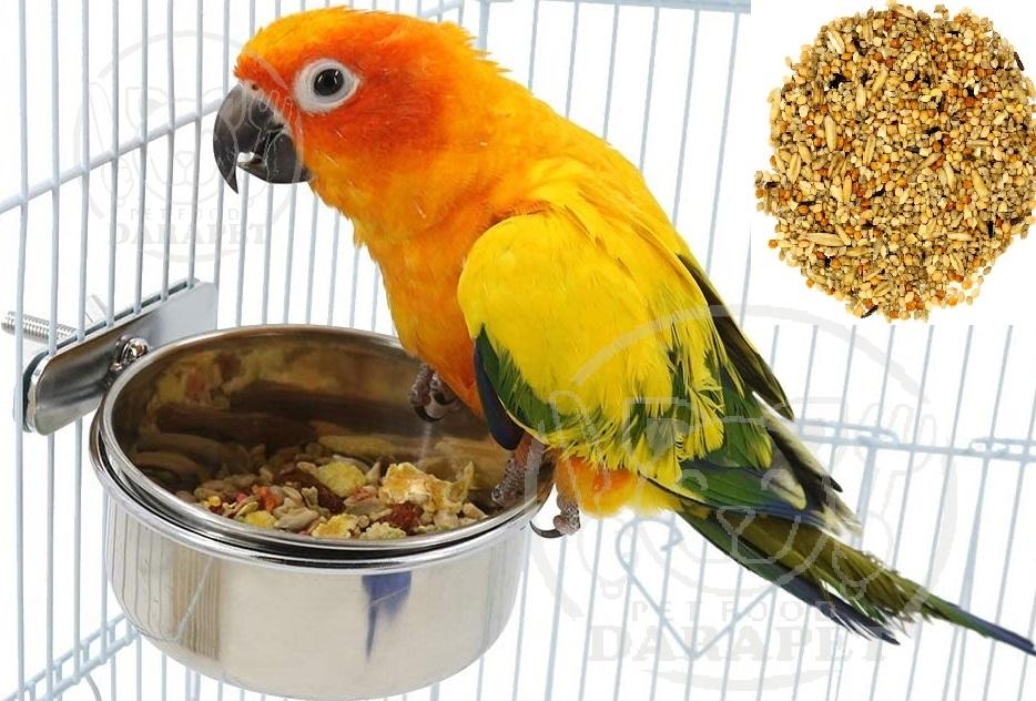 مشاوره فروش غذای پرنده زینتی
