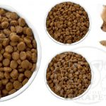 کارخانه تولیدی غذای خشک سگ