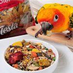 پخش کننده غذای تشویقی طوطی