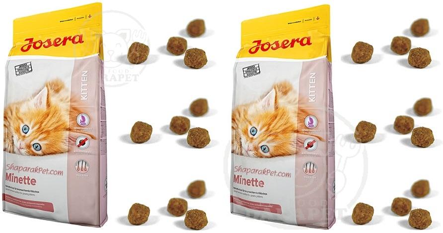 فروش خاص خوراک بچه گربه