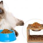 عرضه کننده غذای حیوان خانگی