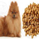 مرکز پخش غذای سگ اشپیتز