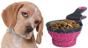 فروشگاه خوراک خشک سگ