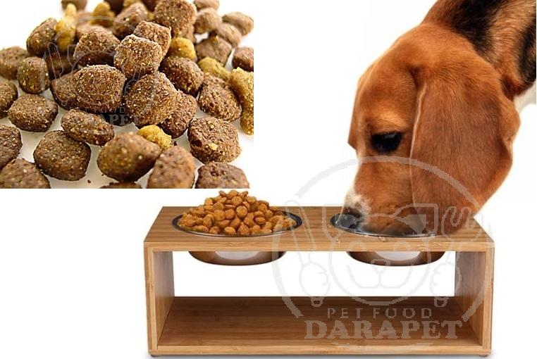 فروش فوری غذای سگ ارزان