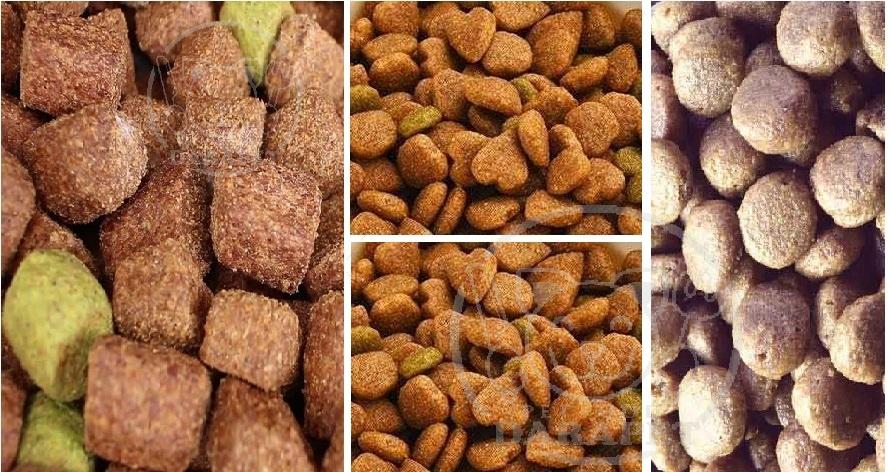انواع مختلف غذای سگ خانگی