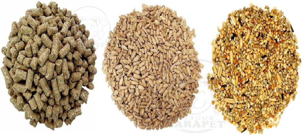 انواع گوناگون غذای خشک پرندگان
