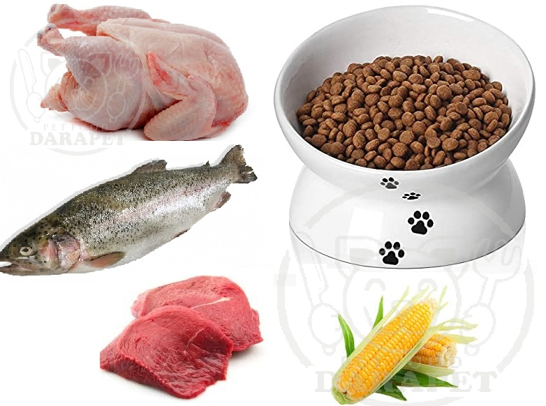 مواد موثر موجود در غذای خشک گربه