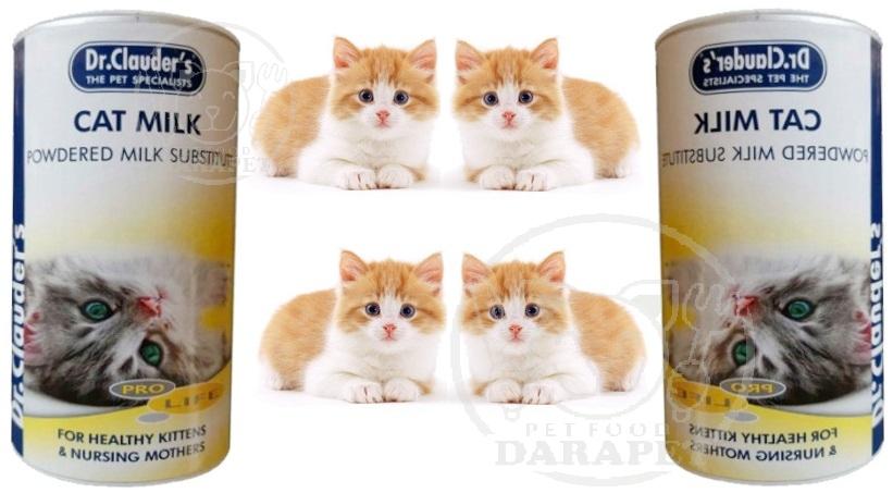چه غذایی برای بچه گربه مفید است؟