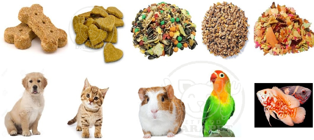 انواع مختلف غذای حیوانات خانگی