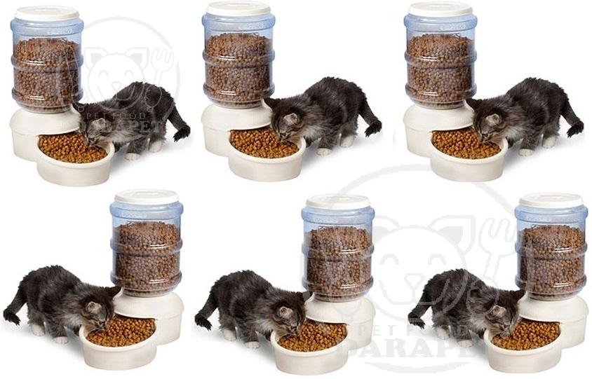 کارخانه تولیدی خوراک گربه فله