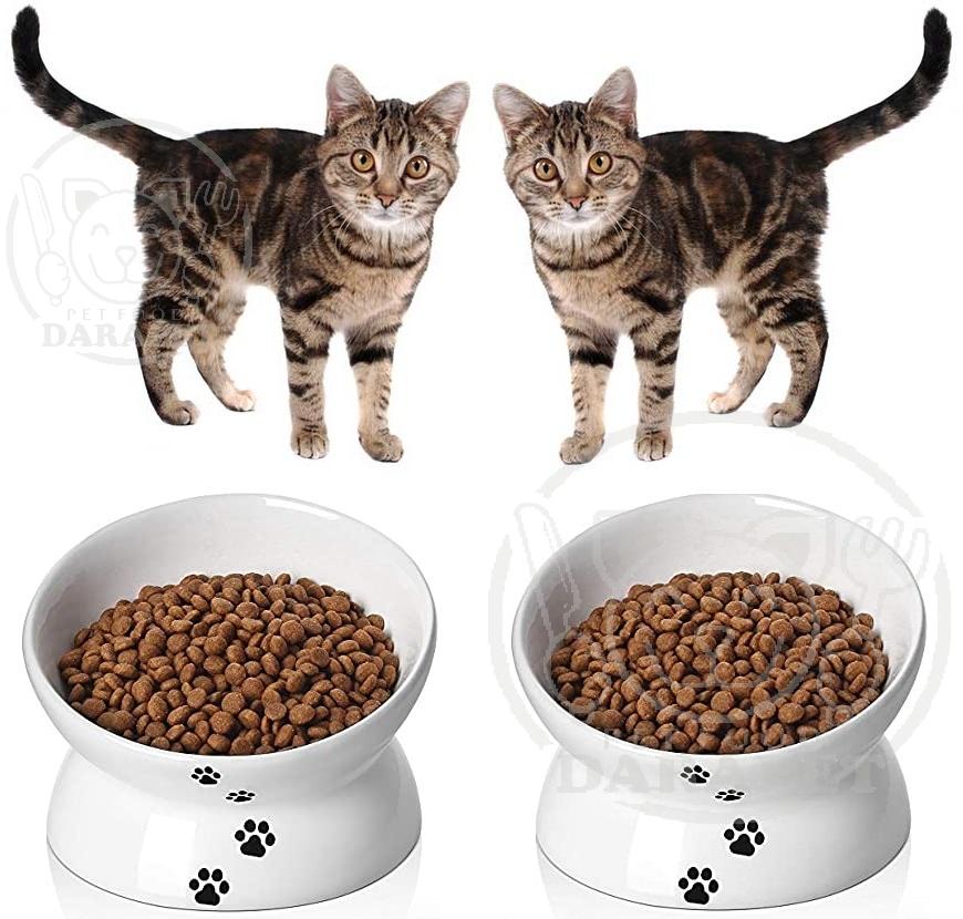 عرضه خوراک گربه ارزان به قیمت مناسب