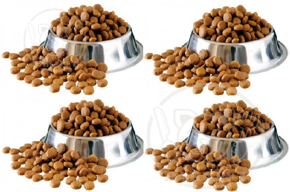 عرضه کننده خوراک گربه صادراتی