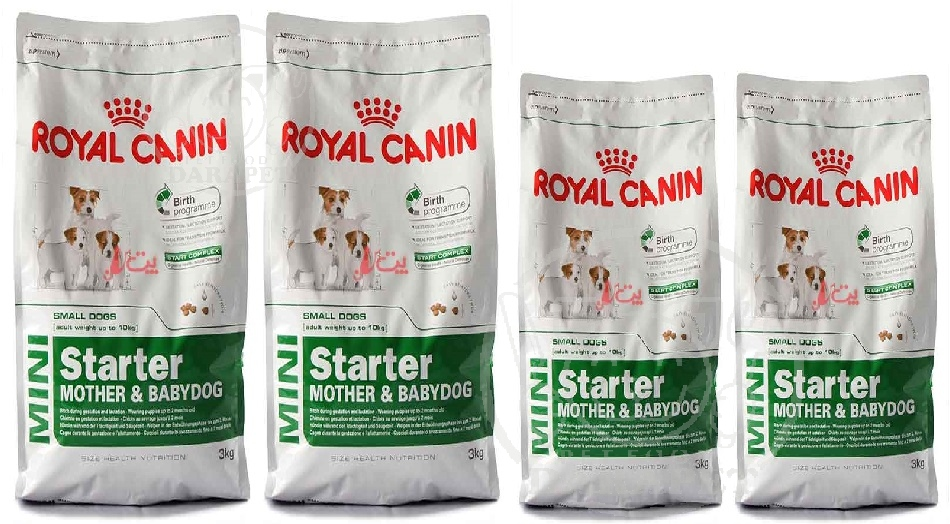 خرید مستقیم غذای مفید سگ