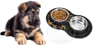 قیمت روز غذای سگ 3 ماهه