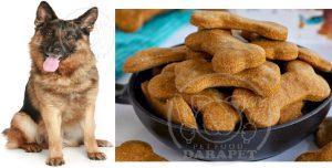 فروشگاه خوراک سگ ژرمن