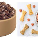 فروشنده انواع غذای سگ خانگی